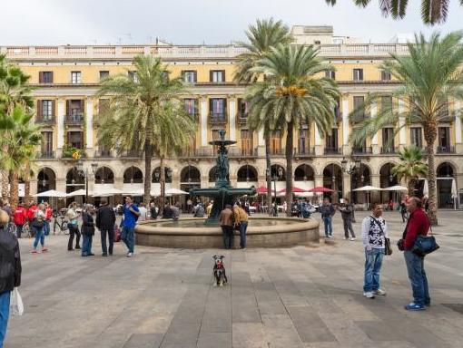 Donde Pasear mi Perro en Barcelona: Mejores Sitios