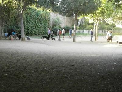 pipican-perro-barcelona-estacion-del-norte