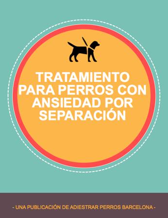 TRATAMIENTO-CORRECCION-PERROS-CON-ANSIEDAD-POR-SEPARACIÓN.png