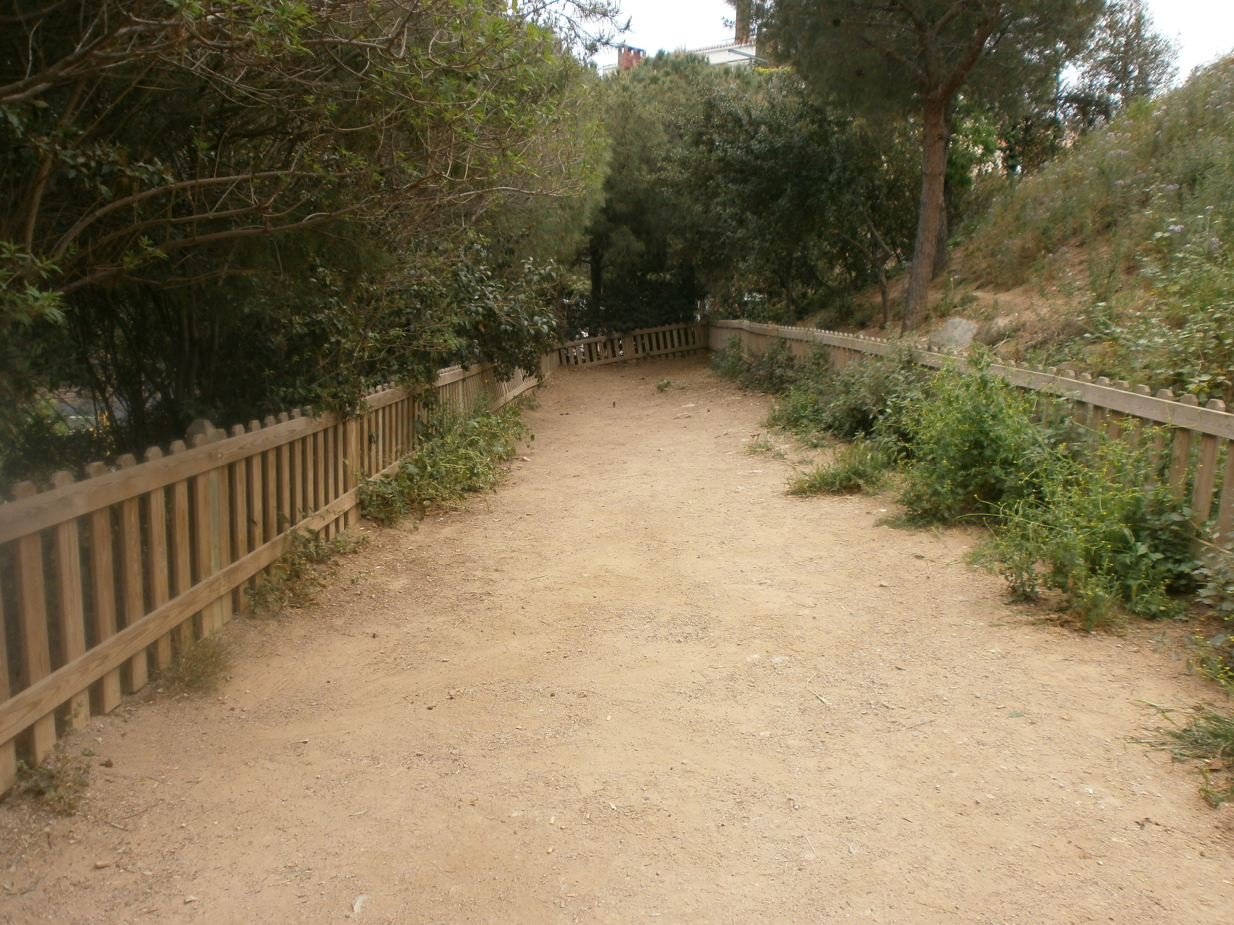 pipican-barcelona-sarria-sant-gervasi-Jardins-Mercè-Rodoreda