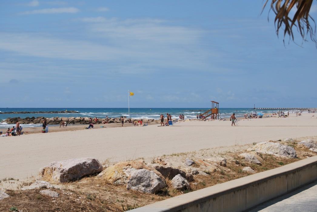 playa-para-perros-garraf-barcelona-alrededores.jpg