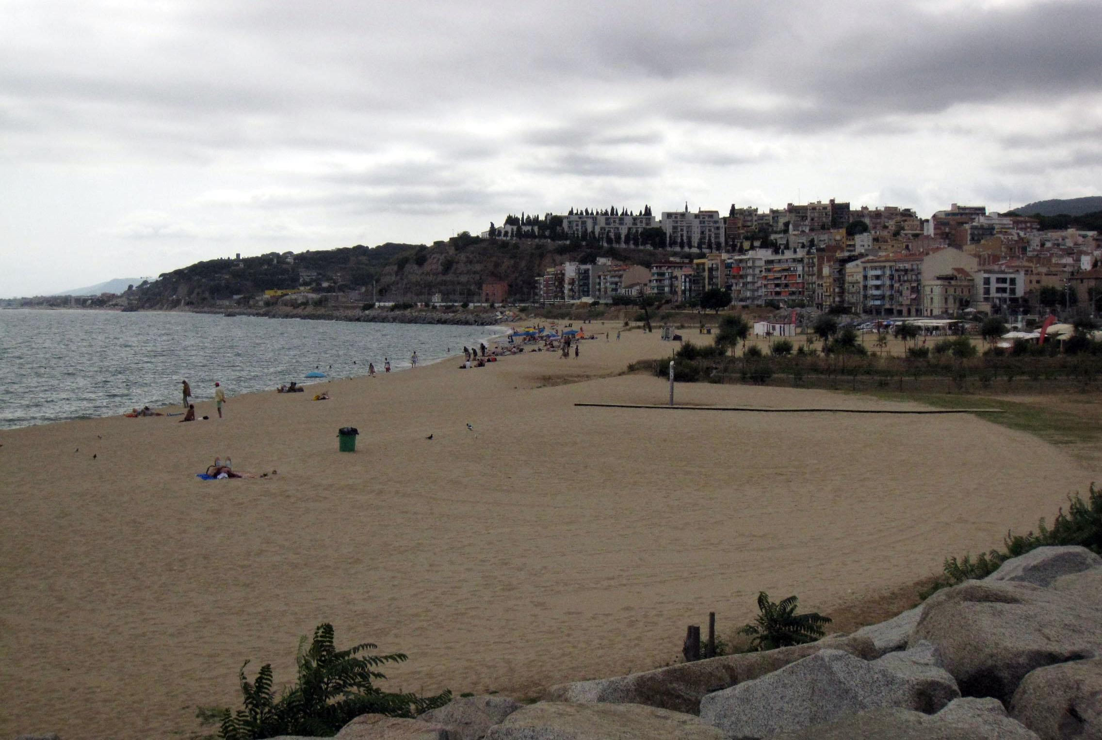 playa-que-acepta-perros-barcelona-alrededores-picordia-arenys-de-mar.jpg